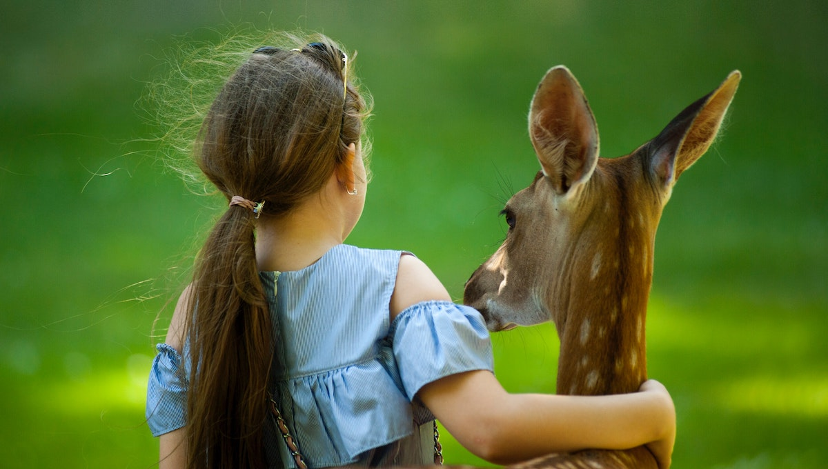 動物との触れ合いで生まれる子どもへのメリットー子どもに会わせたい野生動物ベスト3