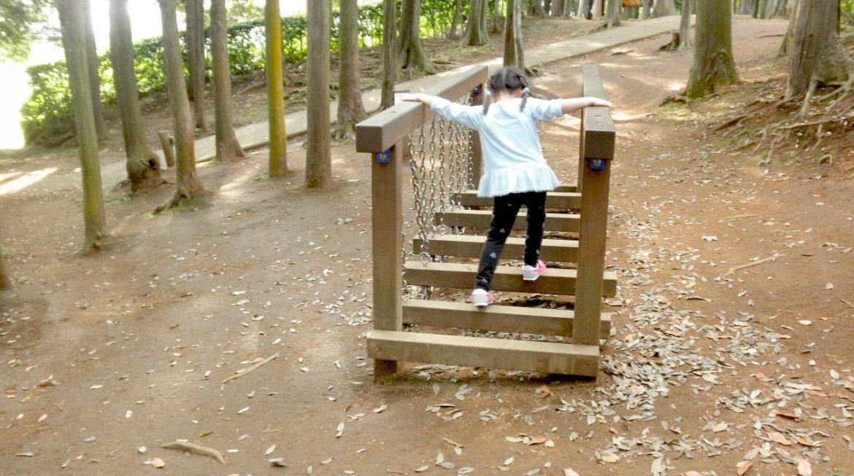 千葉県流山市で子どもとスポーツ・食欲・読書の秋を満喫!