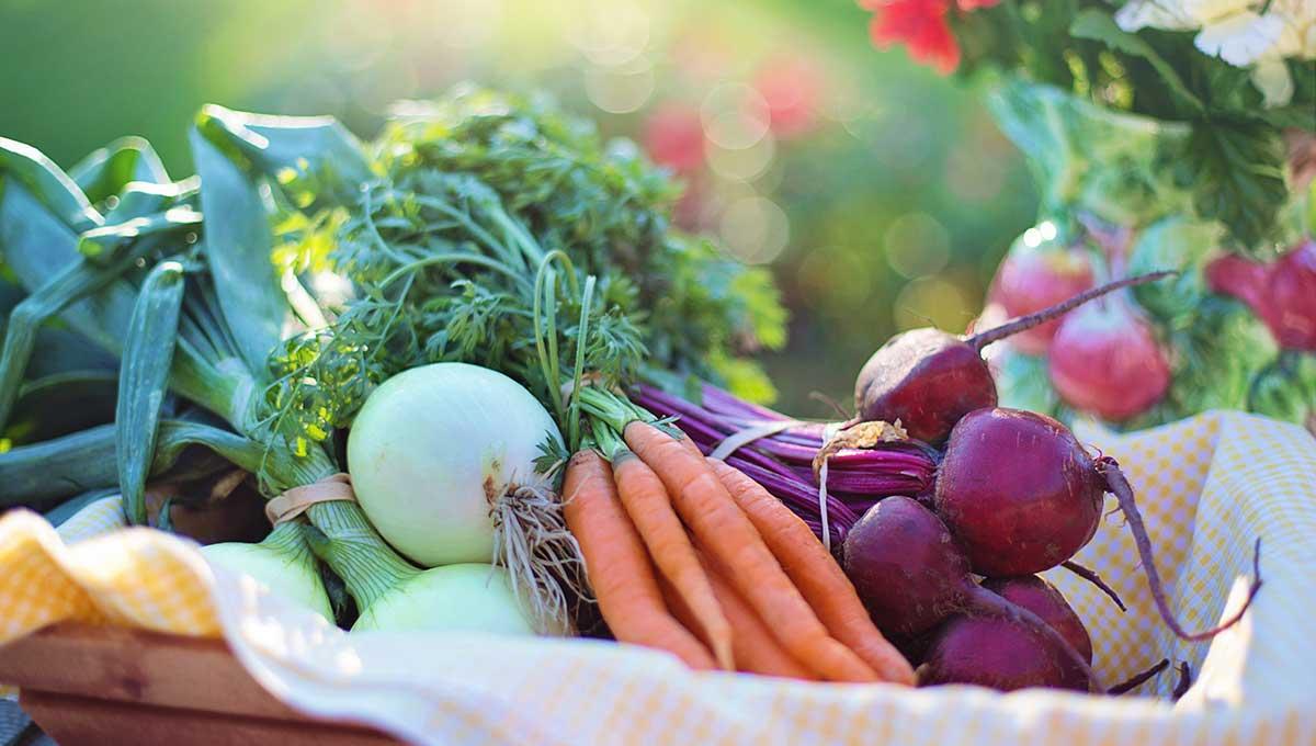 野菜を長持ちさせる保存方法知ってる? ジャガイモ、ニンジン、玉ネギ編