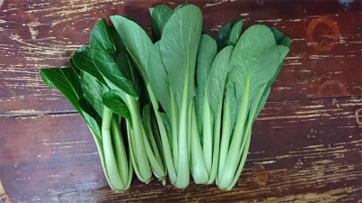 緑黄色野菜画像